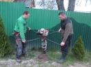 Sadenie stromčekov_3