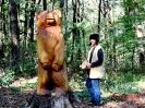 Cesta rozprávkovým lesom_7
