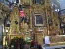 Guadalupe 2016_24